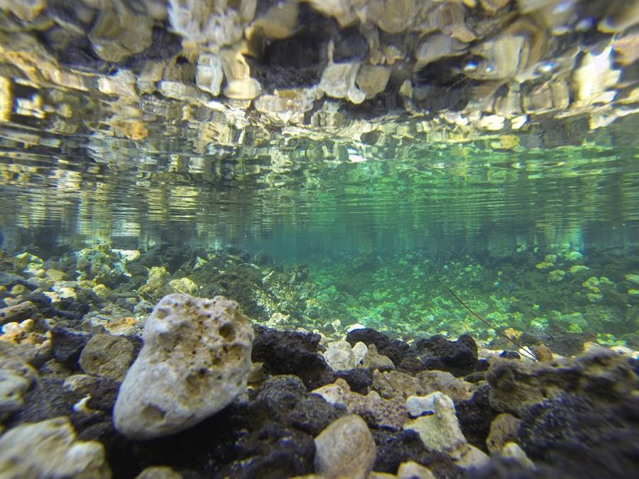Kona Photographer, Fresh Water Spring