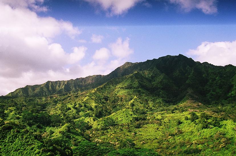 Kauai Landscape Film